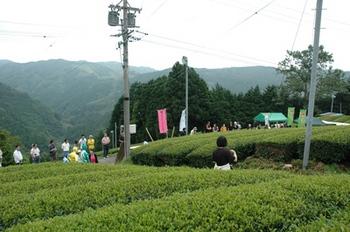 chabachu2010bb.jpg
