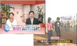 NIB長崎国際テレビ 「NNN Newsリアルタイム」(2008/06/19)